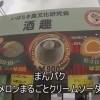 【東京都】まんパク2014【500円】メロンまるごとクリームソーダ(900円) ツカたび2014