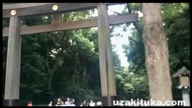 【観光】東京都・明治神宮前(原宿)観光してきた