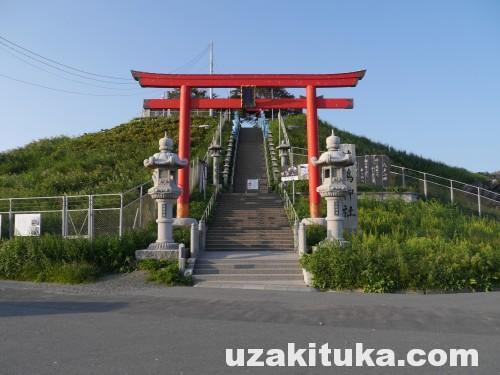 「ウミネコの繁殖地!蕪島の神社が全焼!!!」青森県:蕪島の神社
