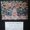 「そびえ立つゴキブリの塔!マジかよ?ゴキブリ放し飼い!日本最大!爬虫類・両生類の動物園」静岡県:IZOO(イズー)(1500円)