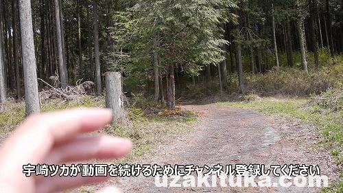 SnapShot(8)