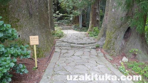 「熊野古道~那智の滝~熊野那智大社」和歌山【観光】滝そのものが神である【三名瀑】