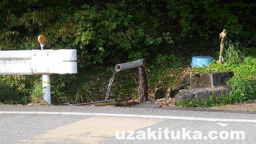 「ステンレス流し台の湯(無料)」和歌山【野湯】道路脇の温泉