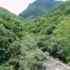 「滝!岩!吊り橋!大自然♪綺麗な渓谷」山梨県:西沢渓谷