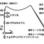 メバルの電気ウキ釣り(夜釣り)