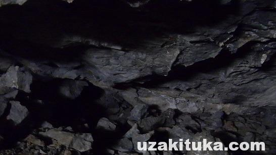 「シェルター探して寝る」#4宇崎ツカの栃木で狩猟サバイバル