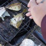 「アイゴ釣って食べる」香川県瀬戸大橋記念公園西側【釣り】
