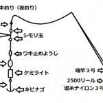 タチウオ電気ウキ仕掛け(夜釣り)