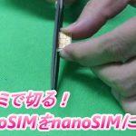 ハサミでmicroSIMをnanoSIMにする方法