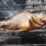 黒部(生地)漁港「カサゴ釣って食べる!」富山県【釣り】9月
