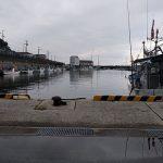 宮崎港ヒスイ海岸「護岸工事で釣りできなかった」富山県【釣り】9月