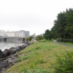 大井ふ頭中央海浜公園しおじ磯で釣り「ハゼが8月に釣れる」東京都10月